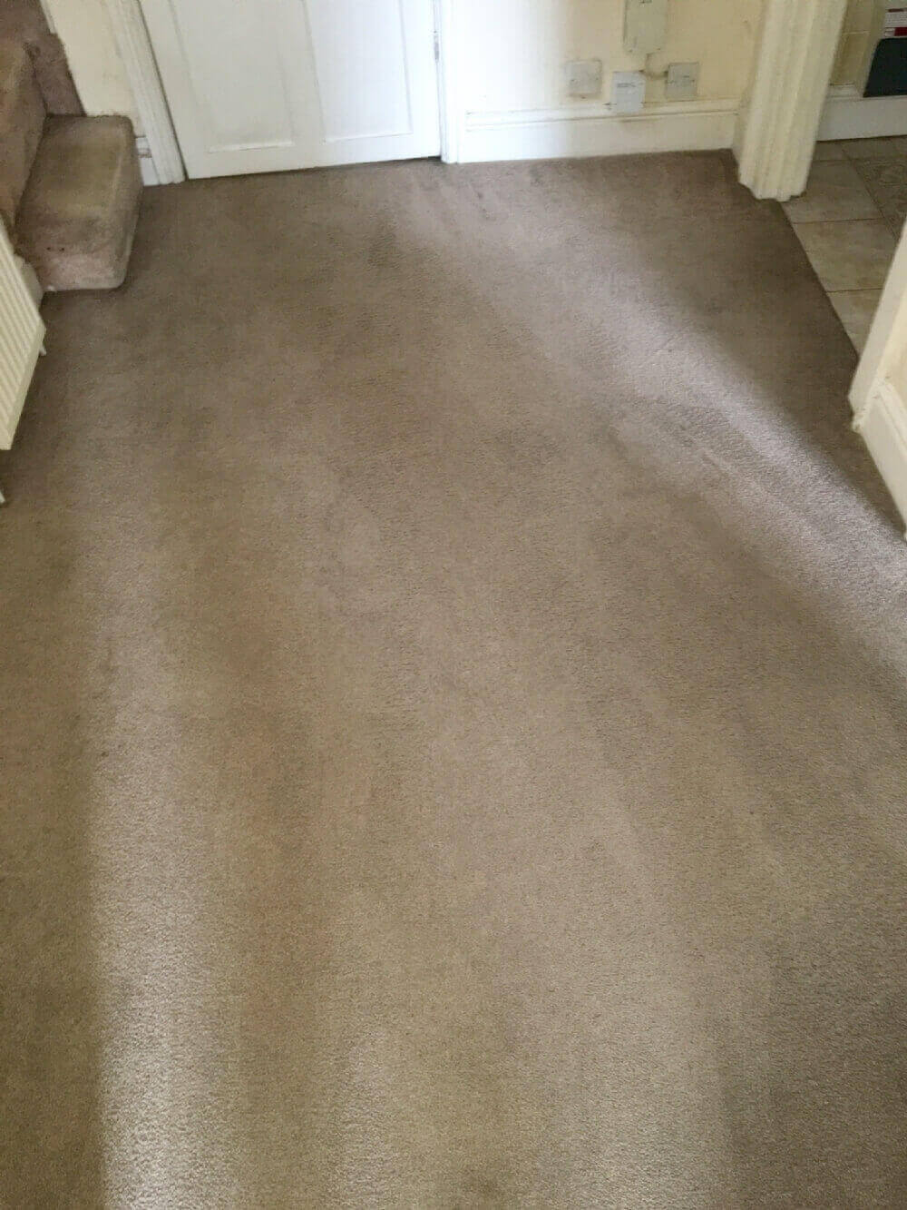 cheap carpet cleaning Warwick