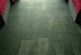 Commercial Carpet Cleaning Warwick