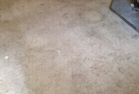 truck mount carpet cleaning Warwick
